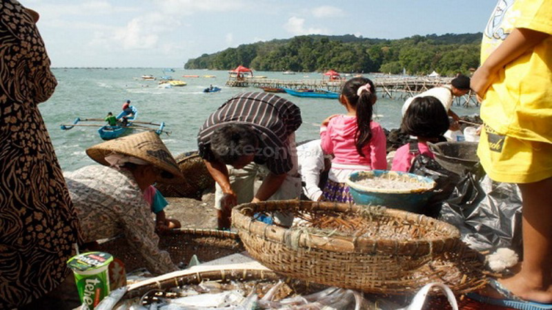 https: img-o.okeinfo.net content 2015 02 26 54 1110994 m-fish-aplikasi-penangkap-ikan-nelayan-indonesia-V3M2g1ziVI.jpg