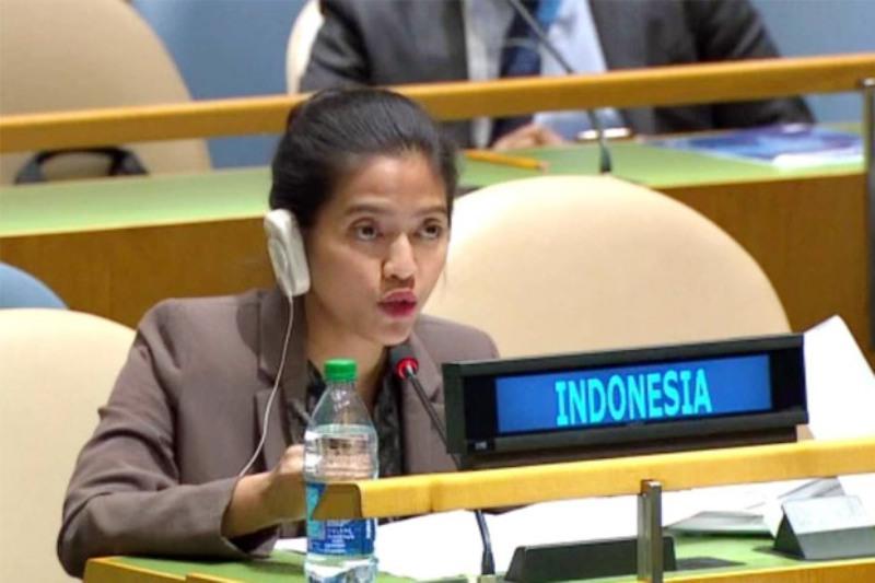 https: img-o.okeinfo.net content 2016 09 29 18 1501490 pengamat-hukum-internasional-komentari-diplomat-cantik-indonesia-di-pbb-KZ25Ir4oNd.jpg