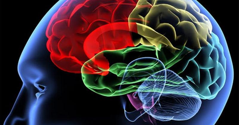 https: img-o.okeinfo.net content 2017 03 08 56 1637764 sains-jelaskan-manfaat-sujud-untuk-kesehatan-otak-NmhEeXYzZ0.jpg