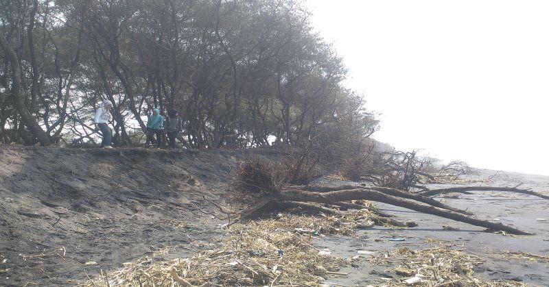 https: img-o.okeinfo.net content 2017 07 17 340 1737855 duh-masyarakat-khawatir-pantai-ujung-pandaran-tinggal-kenangan-QTGp2N6j58.jpg