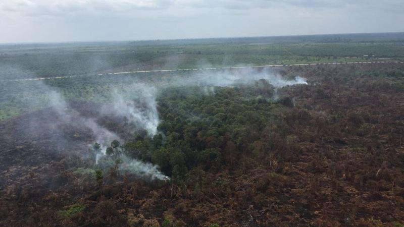 https: img-o.okeinfo.net content 2017 07 26 340 1743951 tanggulangi-kebakaran-lahan-gambut-di-aceh-barat-bnpb-kerahkan-2-helikopter-bom-air-azaR5ZRX7a.jpg