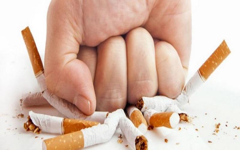 https: img-o.okeinfo.net content 2017 09 06 481 1770526 perokok-aktif-bisa-berhenti-merokok-ini-5-tipsnya-salah-satunya-sering-makan-FF9KAIXglJ.jpg