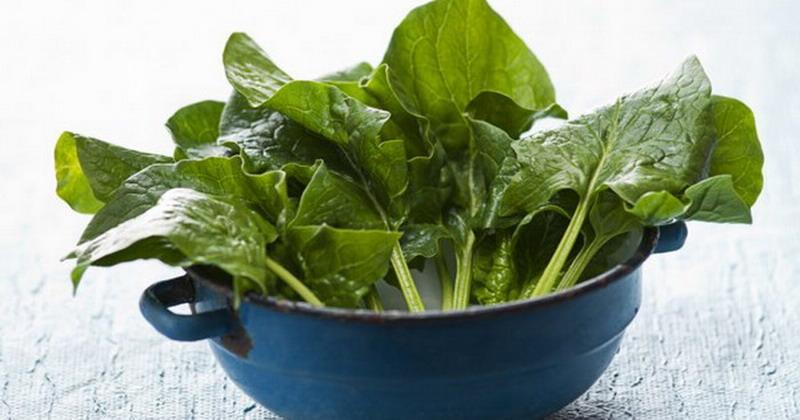 https: img-o.okeinfo.net content 2017 10 06 298 1789966 siapa-sangka-4-sayuran-bumbu-ini-adalah-makanan-sehat-yuk-lebih-sering-menyantapnya-J4pcn9rWxG.jpg
