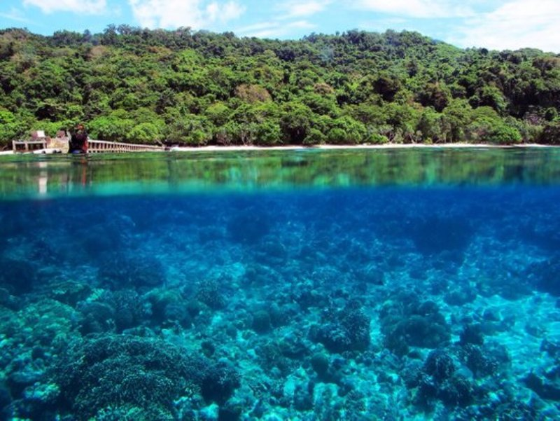 https: img-o.okeinfo.net content 2017 10 13 406 1795170 uncover-indonesia-pesona-3-pantai-di-kepulauan-selayar-miliki-terumbu-karang-indah-yang-asyik-untuk-diselami-zjAAyD8Qvo.jpg
