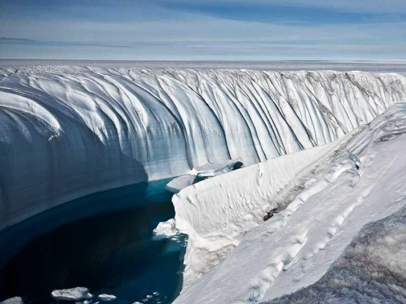 https: img-o.okeinfo.net content 2017 11 12 56 1812578 wow-fosil-berusia-260-juta-tahun-ungkapkan-bahwa-antartika-punya-hutan-AkF8Usg67H.jpg
