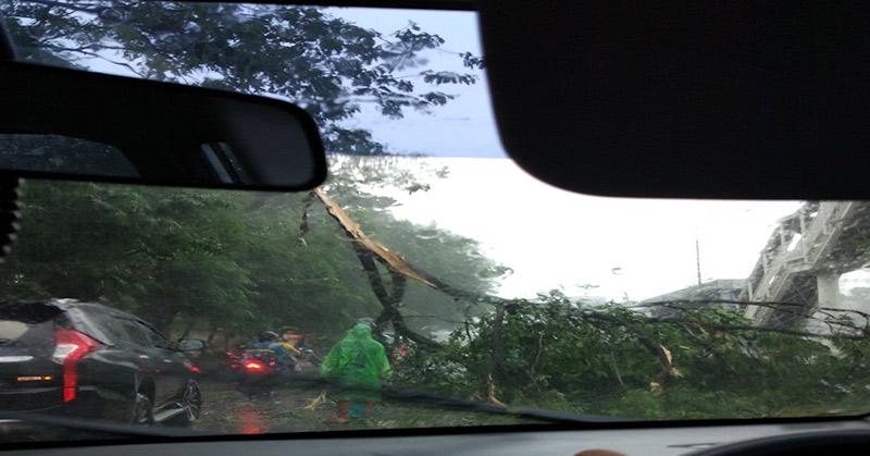 https: img-o.okeinfo.net content 2017 11 17 338 1815797 jakarta-diguyur-hujan-pohon-tumbang-di-jalan-s-parman-dan-tol-pancoran-terendam-171fOqxQuw.jpg