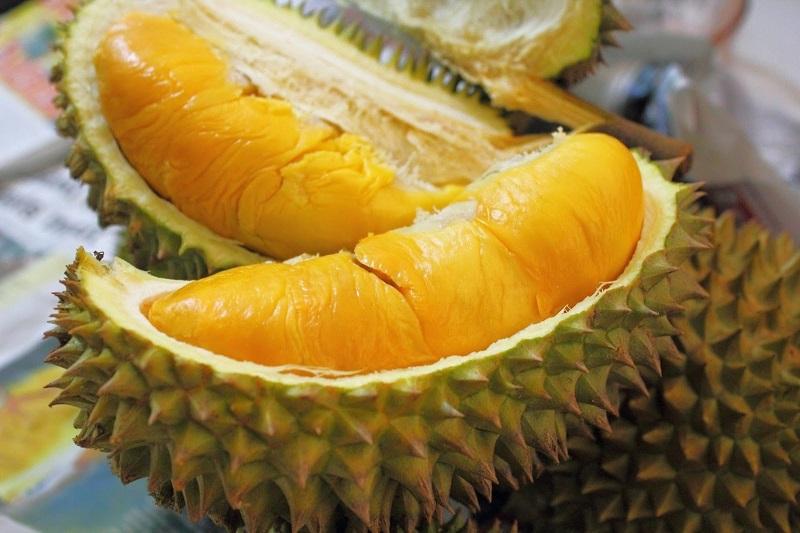 https: img-o.okeinfo.net content 2017 12 18 298 1831863 sensasi-menikmati-durian-bintan-langsung-dari-kebun-jEGEbF3gaQ.jpg