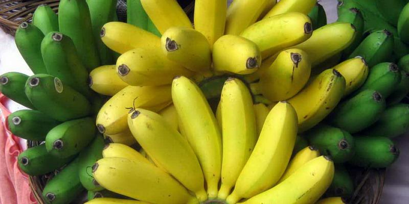 https: img-o.okeinfo.net content 2018 01 05 298 1840736 ketika-nyeri-saat-haid-atasi-dengan-pisang-juga-6-makanan-lainnya-ViIoqGMApt.jpg