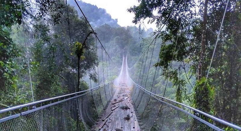https: img-o.okeinfo.net content 2018 01 09 406 1842613 sukabumi-bangun-jembatan-gantung-terpanjang-dan-tertinggi-di-jawa-barat-YeycKuW3kV.jpg