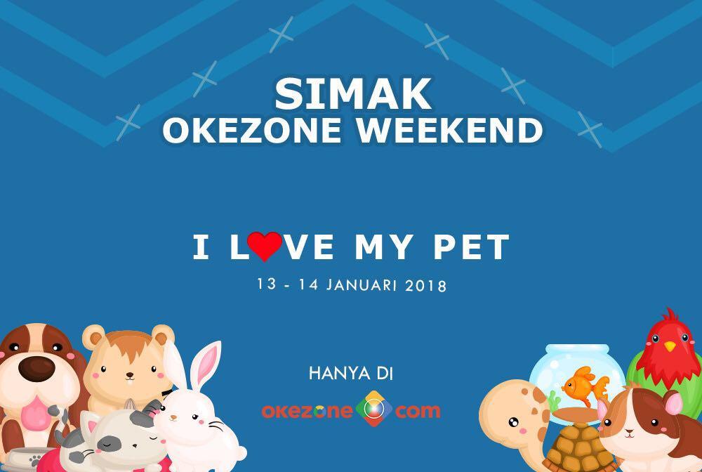 https: img-o.okeinfo.net content 2018 01 12 196 1844311 intip-perawatan-mahal-hewan-kesayangan-selebriti-hingga-kisah-haru-pertemanan-hewan-di-okezone-weekend-dvHqm02vb8.jpg