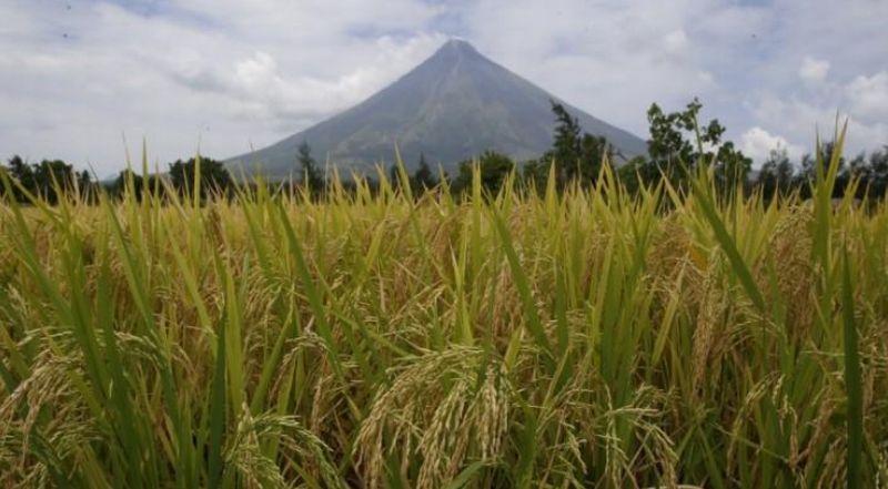 https: img-o.okeinfo.net content 2018 01 14 18 1844680 filipina-tingkatkan-status-gunung-mayon-warga-dievakuasi-9DUdJBXLfr.jpg