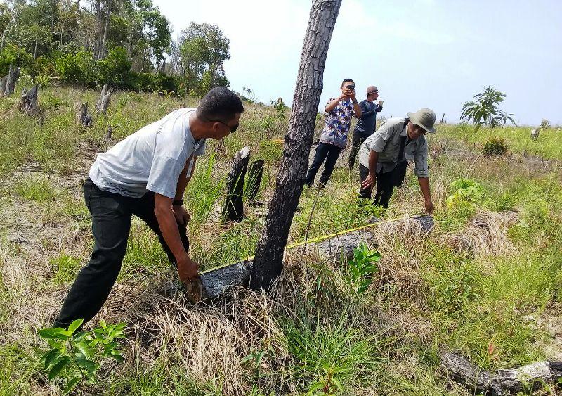 https: img-o.okeinfo.net content 2018 01 14 340 1844706 hutan-lindung-pejem-di-bangka-rusak-anggota-dprd-diduga-terlibat-QTZIzg9DMr.jpg