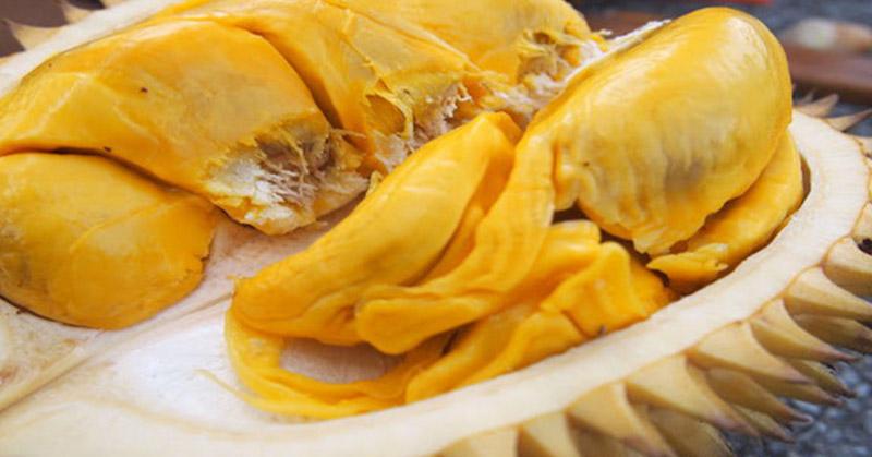 https: img-o.okeinfo.net content 2018 02 01 298 1853405 4-fakta-buah-durian-belum-banyak-diketahui-salah-satunya-tingkatkan-energi-JiK1mC0Fq8.jpg