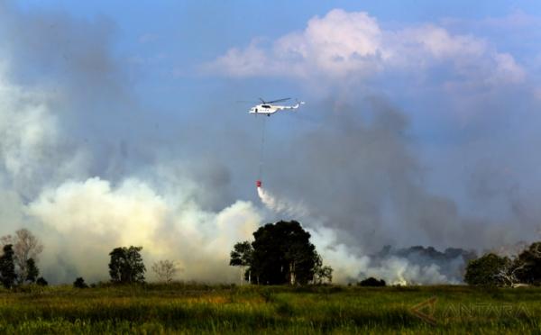 https: img-o.okeinfo.net content 2018 02 14 340 1859454 182-desa-di-kalimantan-barat-rawan-kebakaran-hutan-dan-lahan-ZSMDQcmjI1.jpg