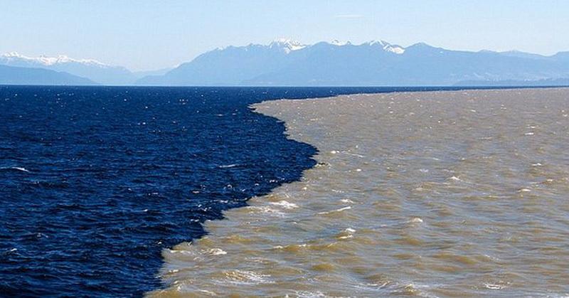 https: img-o.okeinfo.net content 2018 03 01 56 1866669 ada-dinding-yang-menghalangi-tercampurnya-air-laut-dan-air-tawar-r036Iofr7J.jpg