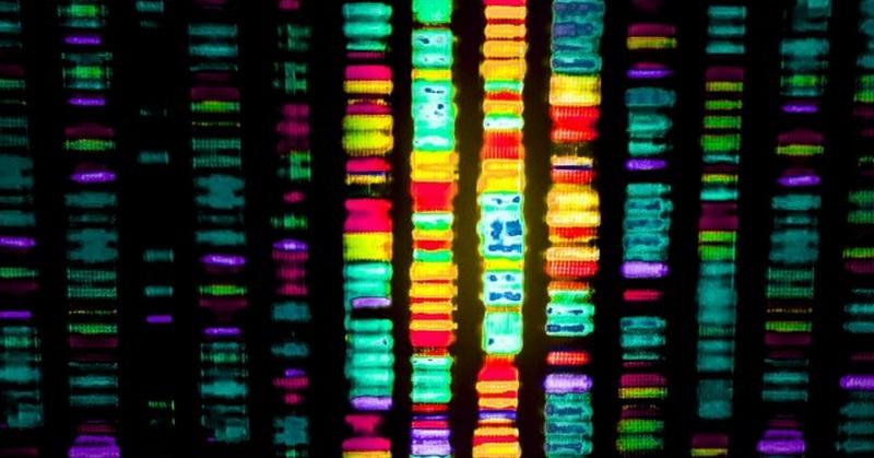 https: img-o.okeinfo.net content 2018 03 20 56 1875248 ilmuwan-usung-terapi-gen-untuk-menyembuhkan-penyakit-oPqeUSmlJs.jpg