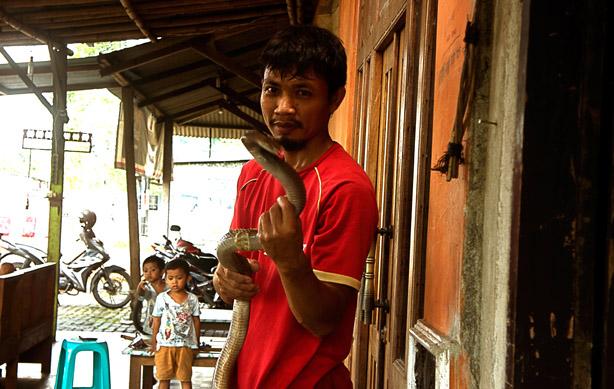 https: img-o.okeinfo.net content 2018 04 30 196 1892937 20-gigitan-kobra-tak-membuat-santoso-jera-ini-kisahnya-tT3viP8fyy.jpg