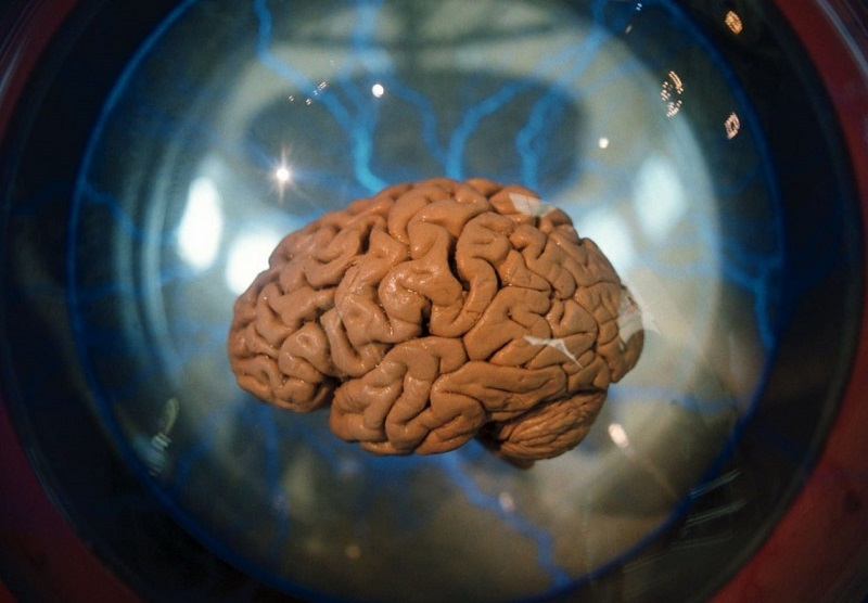 https: img-o.okeinfo.net content 2018 06 22 406 1912637 tradisi-menyeramkan-suku-fore-pemakan-otak-manusia-dWegXvOFx9.jpg