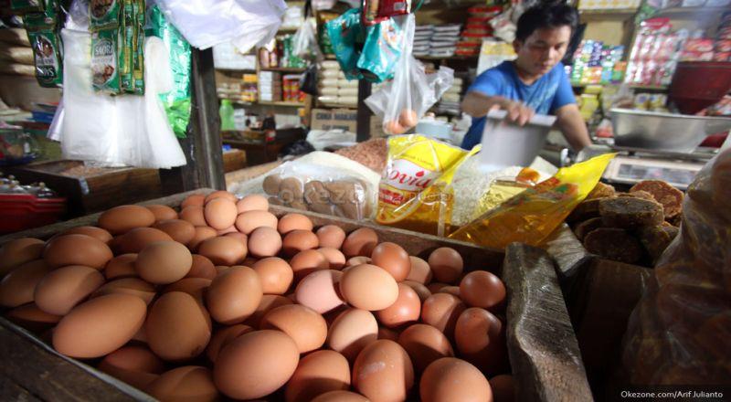 https: img-o.okeinfo.net content 2018 07 17 320 1923365 perjalanan-di-balik-harga-telur-ayam-yang-meroket-pZotMjBUfl.jpg