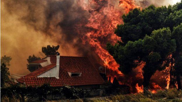 https: img-o.okeinfo.net content 2018 07 24 18 1926483 kebakaran-hutan-di-yunani-20-orang-tewas-dan-100-lainnya-cedera-7jO5VqPQP6.jpg