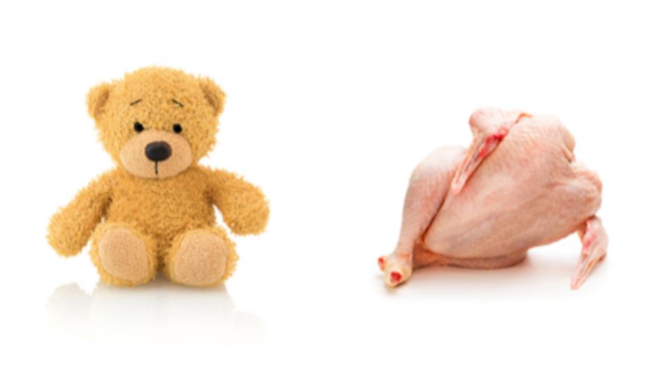 https: img-o.okeinfo.net content 2018 08 10 298 1934562 unggah-iklan-ayam-mentah-bentuk-boneka-beruang-wanita-ini-dihujat-netizen-AojAe2k5vE.png