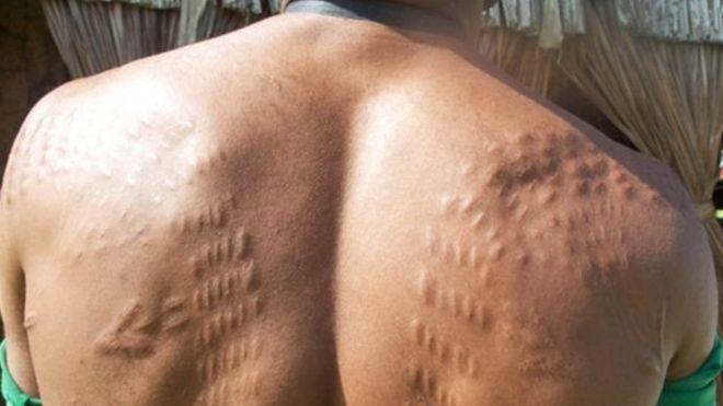 https: img-o.okeinfo.net content 2018 08 30 18 1943675 mengapa-sejumlah-pria-papua-nugini-menyayat-kulit-agar-mirip-buaya-MvkAeOcQnx.jpg