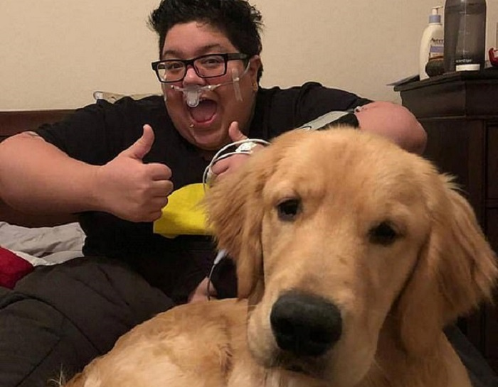 https: img-o.okeinfo.net content 2018 09 20 196 1953197 viral-video-anjing-selamatkan-nyawa-pemiliknya-sangat-menyentuh-hati-YVPgV3wyod.jpg