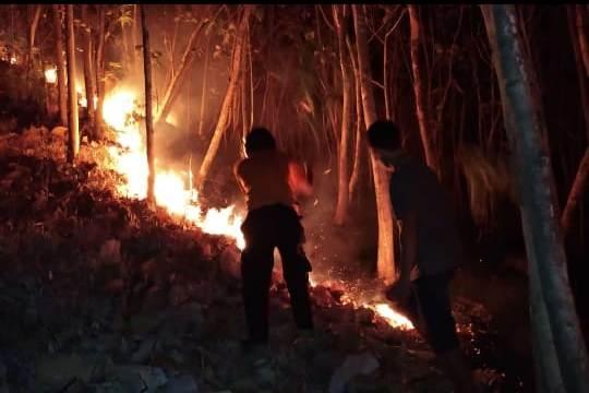 https: img-o.okeinfo.net content 2018 10 15 512 1963981 basarnas-pantau-kemungkinan-pendaki-terjebak-di-kebakaran-gunung-merbabu-yRBdSbuseU.jpeg