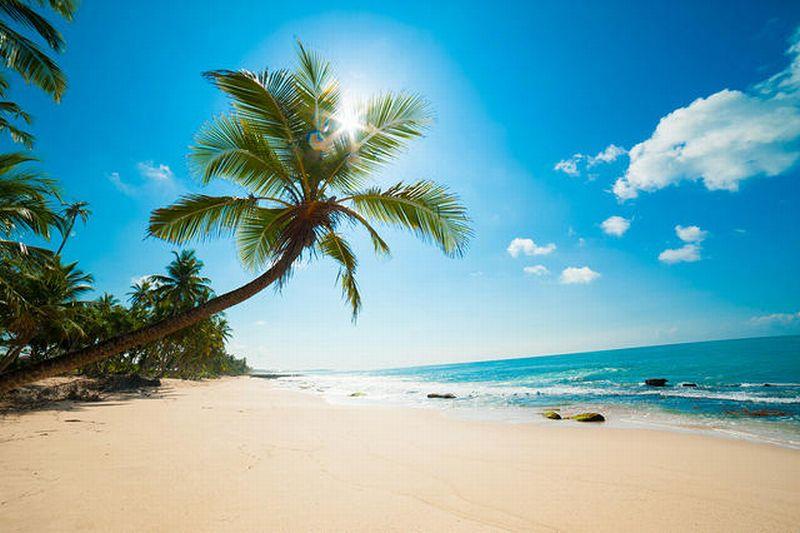 https: img-o.okeinfo.net content 2018 11 01 406 1971892 kunjungi-pantai-di-tanjung-lesung-dan-belitung-investor-jepang-langsung-terpukau-S0Sl79bW4p.jpg
