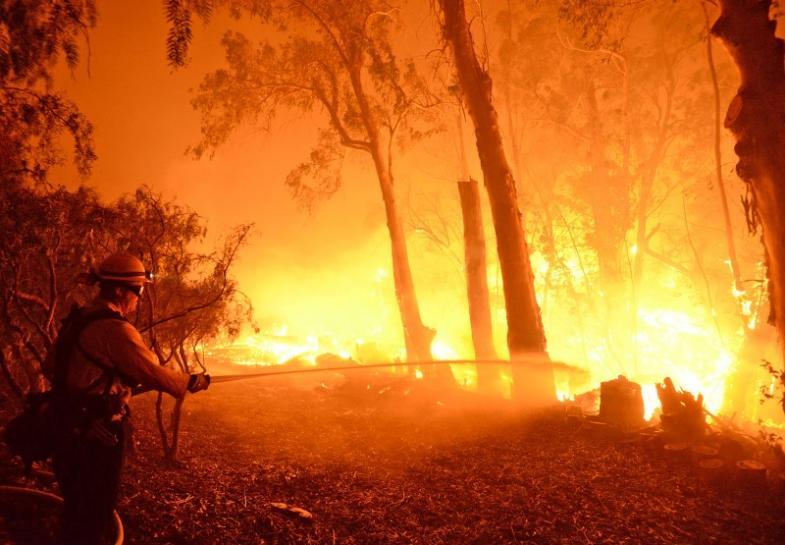 https: img-o.okeinfo.net content 2018 11 11 18 1976258 kebakaran-hutan-california-jumlah-korban-tewas-menjadi-25-orang-5HUujy8yIt.jpg