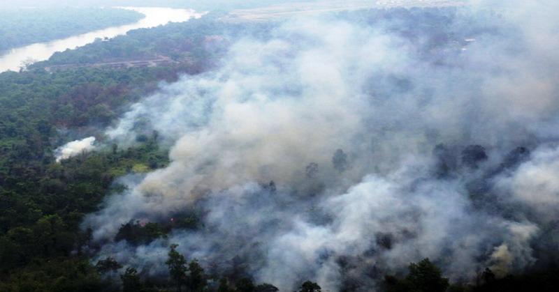 https: img-o.okeinfo.net content 2018 11 12 340 1976514 potensi-kebakaran-hutan-2019-meningkat-karena-dampak-el-nino-woCyOGeJe0.jpg