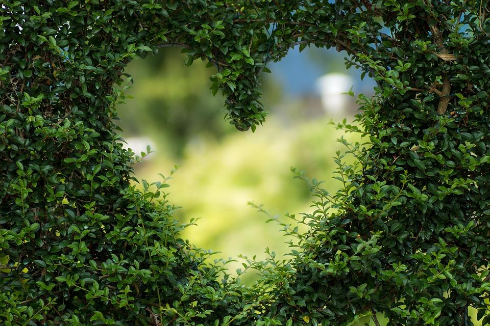 https: img-o.okeinfo.net content 2018 11 20 196 1980131 3-kisah-romantis-nabi-muhammad-saw-bersama-istri-yang-bisa-ditiru-pasangan-z3YktbWuAD.jpg
