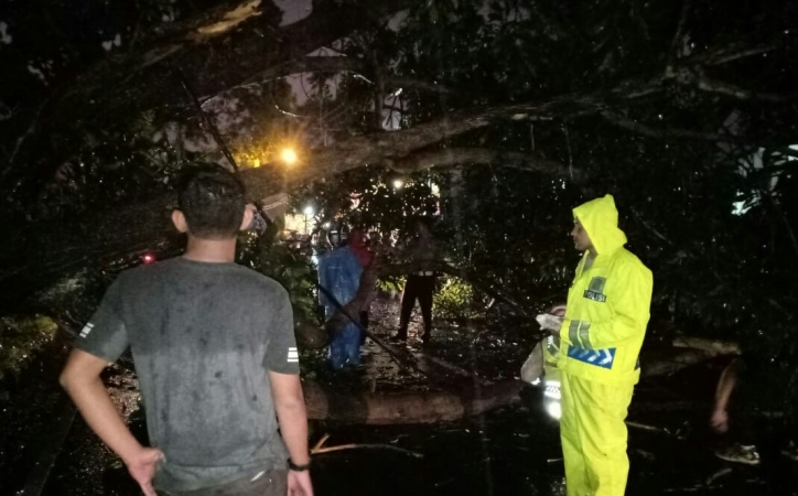 https: img-o.okeinfo.net content 2018 11 24 338 1982329 pohon-tumbang-di-jalur-puncak-bogor-akibat-hujan-deras-lalin-macet-QZ4zDoweXi.jpg