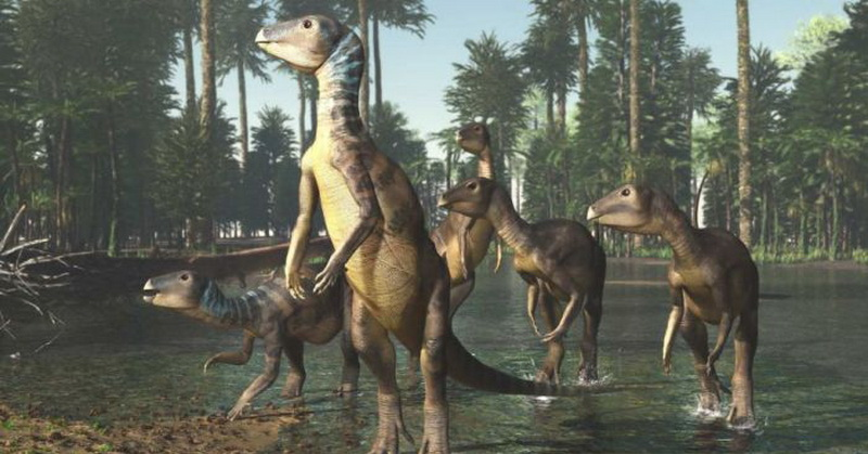 https: img-o.okeinfo.net content 2018 12 05 56 1987365 ditemukan-dinosaurus-spesies-baru-diyakini-hidup-100-juta-tahun-lalu-Xg67NsKvZU.jpg