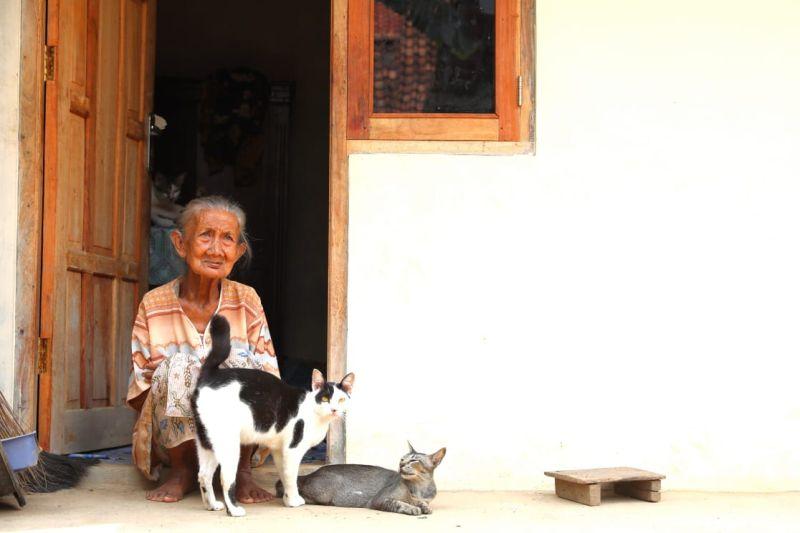 https: img-o.okeinfo.net content 2019 01 11 512 2002859 cerita-haru-mbah-kusnari-dan-5-kucing-yang-punya-rumah-baru-HVbrwcqtXB.jpg