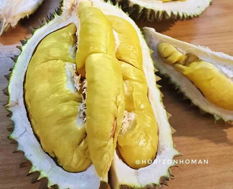 https: img-o.okeinfo.net content 2019 01 16 298 2005406 3-durian-terenak-dan-termahal-di-dunia-nomor-2-dari-indonesia-Xbvu6OlPLh.jpg