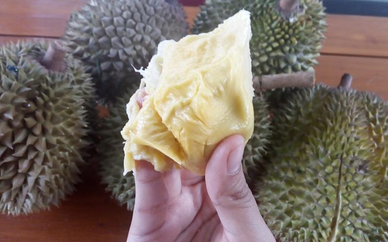 https: img-o.okeinfo.net content 2019 01 24 298 2008928 sensasi-makan-durian-bawor-rp1-2-juta-di-kediri-enaknya-tingkat-dewa-oX6SHKiURv.jfif