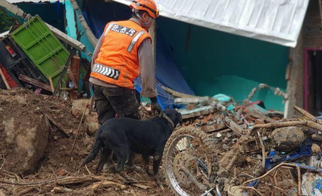 https: img-o.okeinfo.net content 2019 01 29 609 2010938 anjing-pelacak-temukan-3-jasad-korban-longsor-di-gowa-nh2H3Jj1Ki.JPG