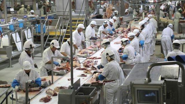 https: img-o.okeinfo.net content 2019 02 07 18 2014863 kisah-anak-anak-muda-indonesia-bekerja-keras-di-pabrik-daging-australia-39yNK1fkG8.jpg