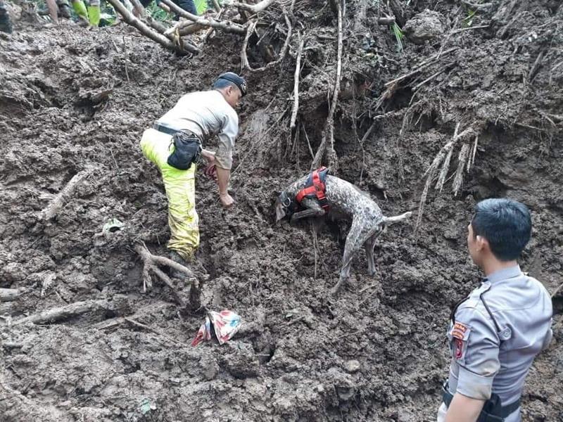 https: img-o.okeinfo.net content 2019 03 08 340 2027384 korban-longsor-di-labuan-bajo-2-tewas-6-masih-tertimbun-eBorYYgbfB.jpg