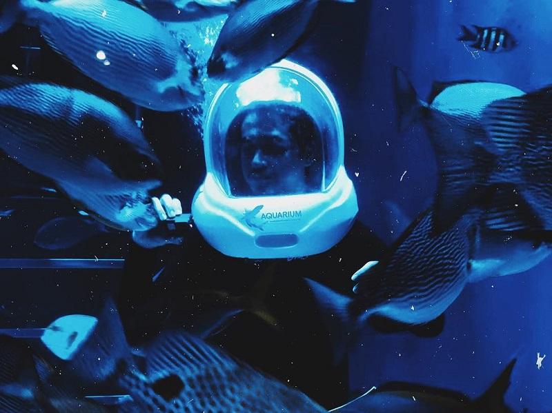 https: img-o.okeinfo.net content 2019 06 20 406 2068585 jakarta-aquarium-suguhkan-pencak-silat-underwater-dan-bikin-ondel-ondel-di-hut-dki-jakarta-8QWiQkveWa.jpg