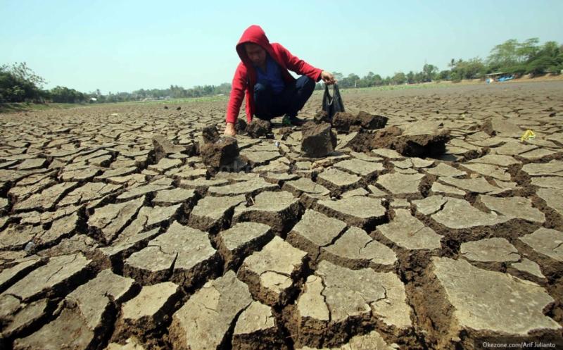 https: img-o.okeinfo.net content 2019 06 25 337 2070753 35-persen-wilayah-indonesia-masuki-musim-kemarau-waspada-bencana-kekeringan-tPxElgmHHA.jpg
