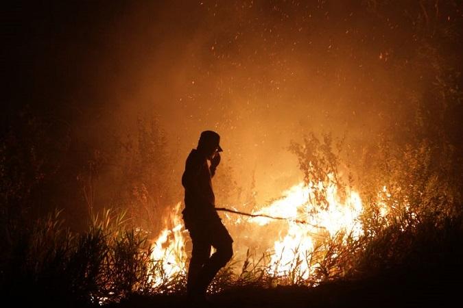https: img-o.okeinfo.net content 2019 07 09 510 2076775 pemda-diy-waspadai-kebakaran-hutan-saat-musim-kemarau-eprqXyRKeD.jpg