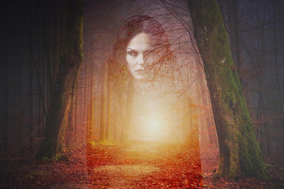 https: img-o.okeinfo.net content 2019 07 11 612 2077709 pohon-keramat-di-pura-bali-terbakar-perempuan-indigo-sebut-penunggunya-marah-e38Rg9CaJK.jpg