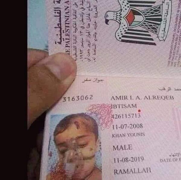 https: img-o.okeinfo.net content 2019 07 19 18 2081037 warganet-terenyuh-melihat-foto-paspor-bocah-palestina-dengan-alat-bantu-pernafasan-lgIYrviL1a.jpg