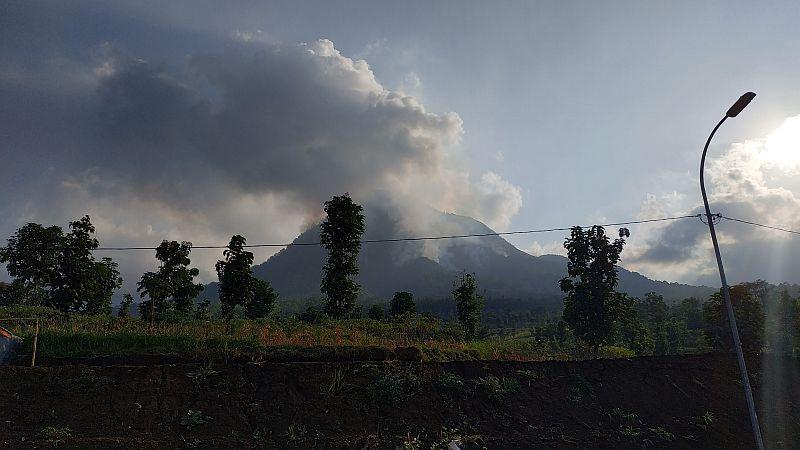 https: img-o.okeinfo.net content 2019 07 23 519 2082287 fakta-fakta-kebakaran-hutan-gunung-panderman-yang-terus-meluas-u3yCJgtKRJ.jpg