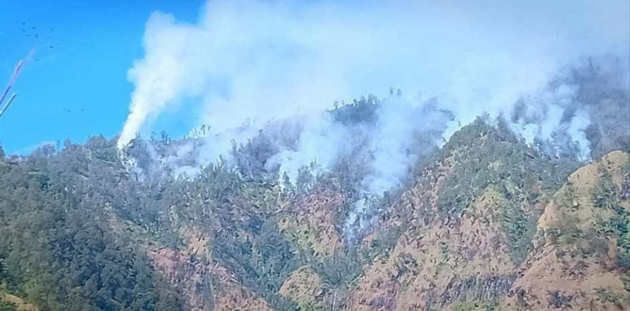 https: img-o.okeinfo.net content 2019 07 23 519 2082522 cuaca-kering-sebabkan-hutan-gunung-wilis-terbakar-tim-gabungan-dikerahkan-W279BiJ8Ej.jpg