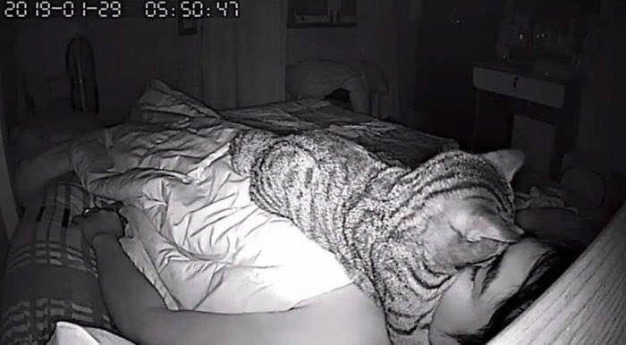 ria tersebut akhirnya sengaja menyalakan kamera untuk melihat apa yang terjadi pada kejadian yang viral itu.