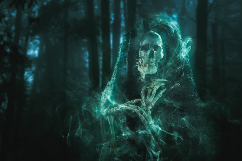 https: img-o.okeinfo.net content 2019 08 08 612 2089371 hantu-kuntilanak-pocong-dan-genderuwo-ternyata-tempati-pohon-berbeda-ini-penjelasan-furi-harun-sM2FOAqyNj.jpg