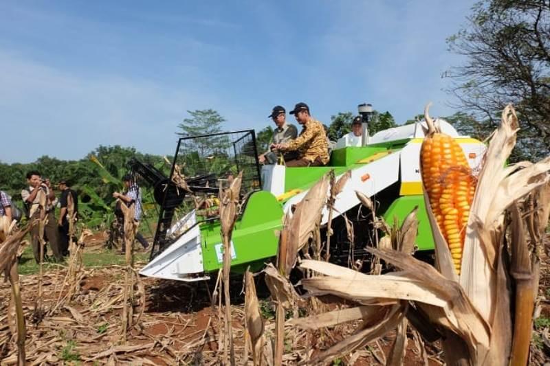 https: img-o.okeinfo.net content 2019 08 13 1 2091203 presiden-jokowi-kagum-pertanian-indonesia-bertransformasi-jadi-modern-jkDytB2gQr.jpg